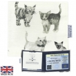 Meow Blue Badge & Parking Clock Wallet