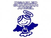 Disabled Guardian Angel (32)