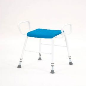 Deluxe Perching Stool With Arms
